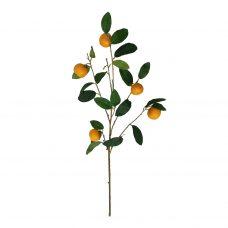 Fruittak Kunst Sinaasappels