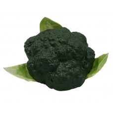 Namaak Broccoli