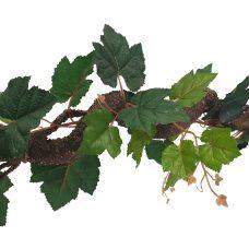 Krulliaan Druivenblad 175cm