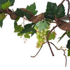 Krulliaan Witte Druiven 175cm