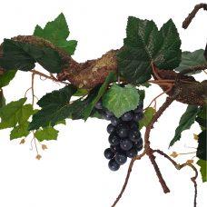Krulliaan Blauwe Druiven 175cm
